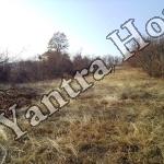 partsel za prodajba Karaivantsa Dryanovo