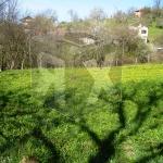 partsel za prodajba Voynezha Veliko Tarnovo