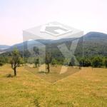 partsel za prodajba Radkovtsi Veliko Tarnovo